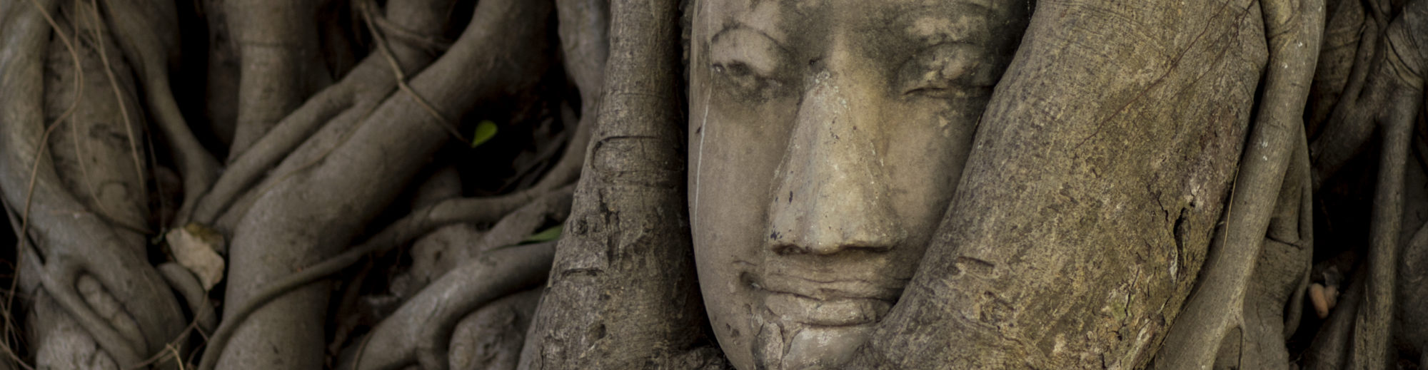 Compassionate Balance Meditation